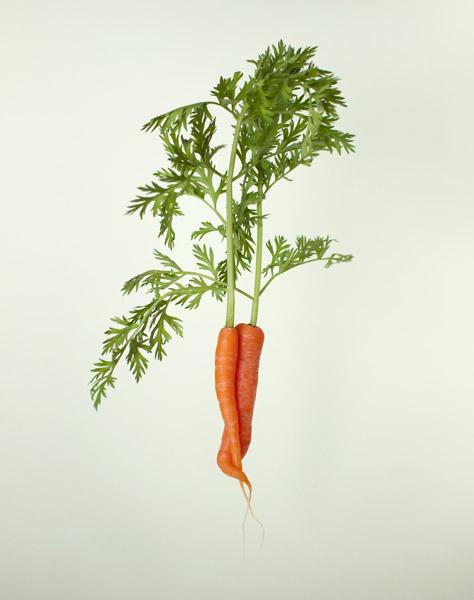 2013-06-08-irene-cecile-embracing-carrots-volkskrant-magazine
