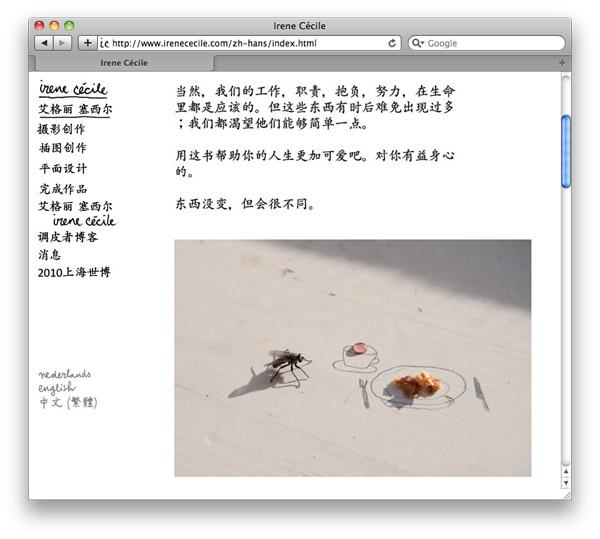 Mijn website nu ook in het Chinees :)