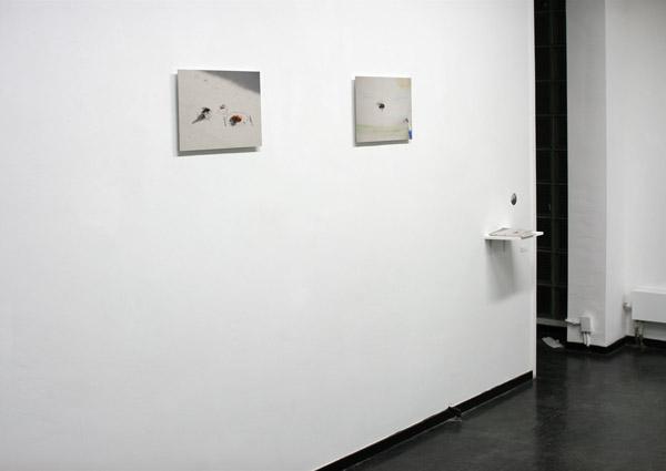 Foto's van de expositie in het Amsterdams Centrum voor Fotografie